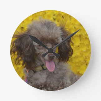Sweet Tiny Brown Poodle Round Clock