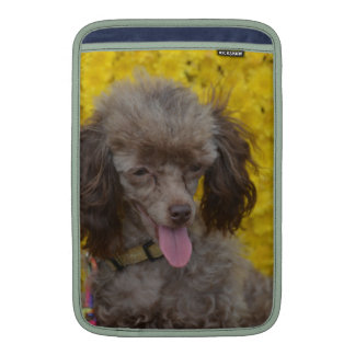 Sweet Tiny Brown Poodle Sleeve For MacBook Air
