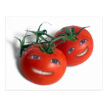 Sweet Tomatoes Postcard