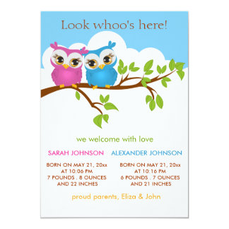 Sweet Twins Owls Baby Girl Boy Birth Announcement