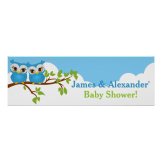 Sweet Twins Owls Boy Baby Shower Banner Poster