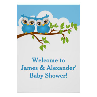 Sweet Twins Owls Boy Baby Shower Poster