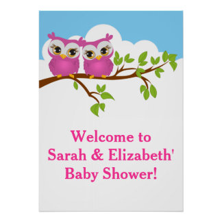 Sweet Twins Owls Girl Baby Shower Poster