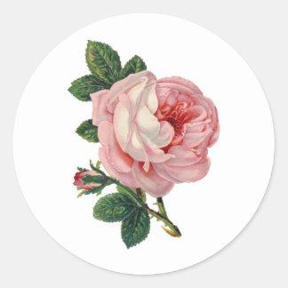 Sweet Victorian Rose Sticker