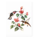 Sweet Vintage Floral Hummingbirds Pair Postcards
