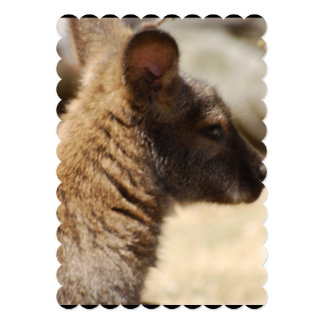 Sweet Wallaby 5x7 Paper Invitation Card