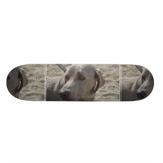 Sweet Weimaraner Skateboard