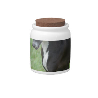 Sweet Whippet Candy Jars