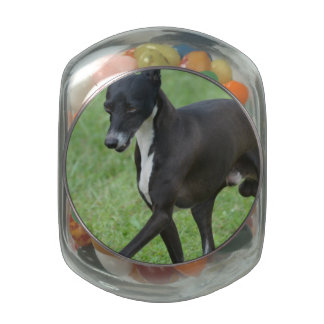 Sweet Whippet Glass Candy Jar