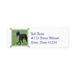 Sweet Whippet Custom Return Address Label