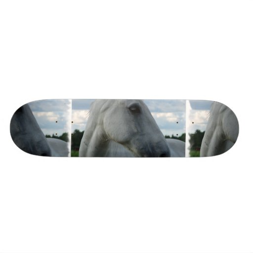 Sweet White Horse Skate Decks