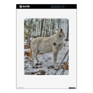 Sweet White Mare and Winter Forest Gift iPad Decal