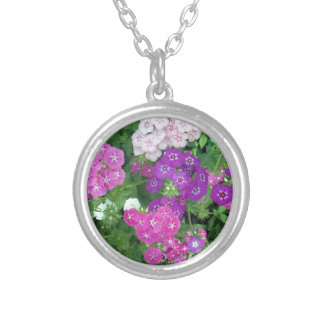 Sweet_William_Flowers_Bursting_With_Colour,_ Silver Plated Necklace