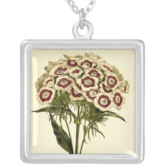 Sweet William Silver Plated Necklace