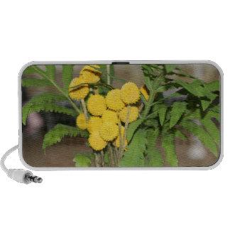 Sweet Yellow Flowers Doodle Speaker