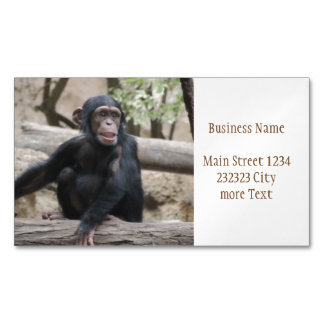 Sweet youmg Chimpanzee Magnetic Business Card