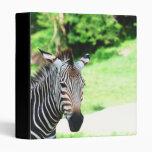 Sweet Zebra Binder
