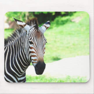 Sweet Zebra  Mouse Pad