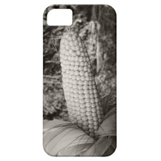 Sweetcorn iPhone SE/5/5s Case
