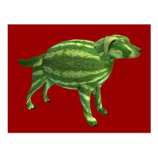 Sweetest Melon Dog Postcard