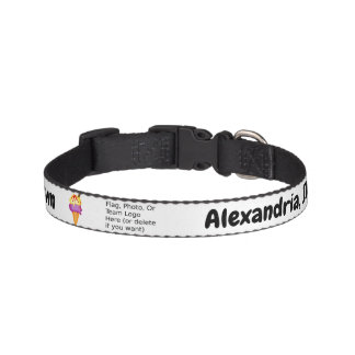 """Sweetest Town"" Design For Alexandria, Indiana Pet Collar"