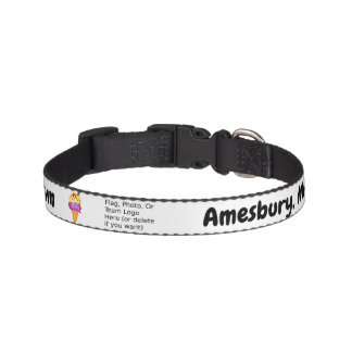 """Sweetest Town"" Design For Amesbury, Massachusetts Pet Collar"
