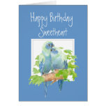 Sweetheart Birthday, Cute Romantic Parrots, Birds Card