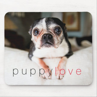 Sweetie Pie Boston Terrier Mousepad