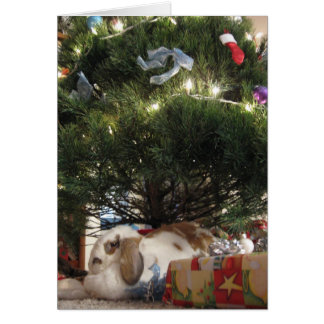 Sweetie Pie's Christmas Card
