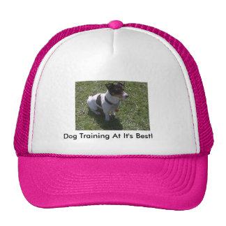 Sweetie's Dog Training Trucker Hat