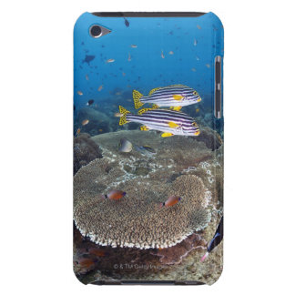 Sweetlip Fish Case-Mate iPod Touch Case
