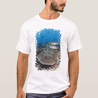 Sweetlip Fish T-Shirt