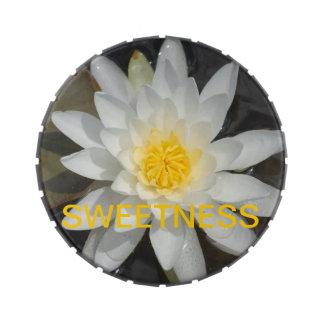 Sweetness Tin Candy Tin