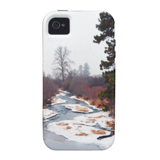 Swell Creek iPhone 4/4S Cases
