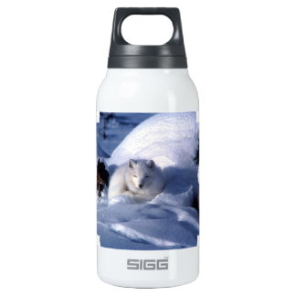 Swift Fox 10 Oz Insulated SIGG Thermos Water Bottle