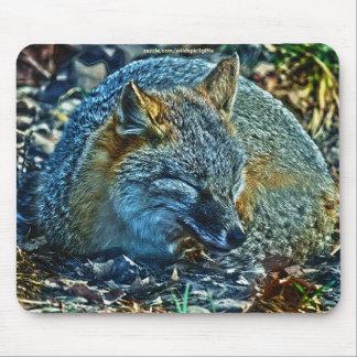 Swift Fox Asleep on Leaves Wildlife Mousepad