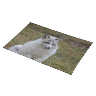 Swift Fox Cloth Placemat