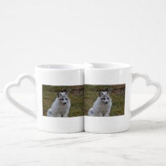 Swift Fox Couples' Coffee Mug Set