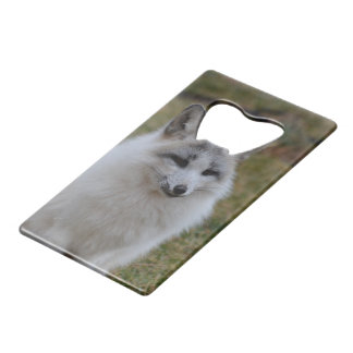 Swift Fox Credit Card Bottle Opener
