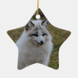 Swift Fox Double-Sided Star Ceramic Christmas Ornament