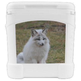 Swift Fox Igloo Rolling Cooler