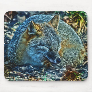 Swift Fox in Forest Wildlife Photo Art Mousemat Mouse Pad