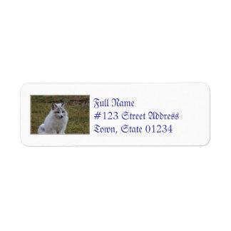 Swift Fox Custom Return Address Labels