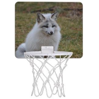 Swift Fox Mini Basketball Hoops