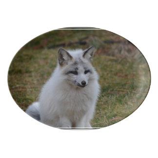 Swift Fox Porcelain Serving Platter