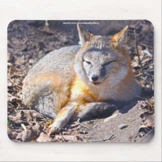 Swift Fox Rests in Forest Wildlife Mousepad