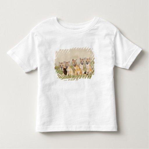 Swift Fox (Vulpes macrotis) young at den burrow, 2 Toddler T-shirt