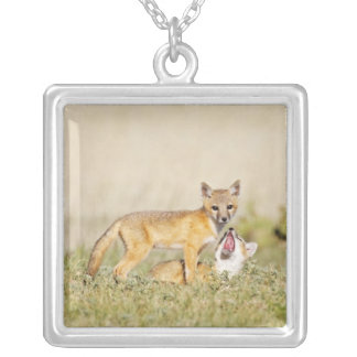 Swift Fox (Vulpes macrotis) young at den burrow, 4 Silver Plated Necklace
