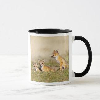 Swift Fox (Vulpes macrotis) young at den burrow, 5 Mug