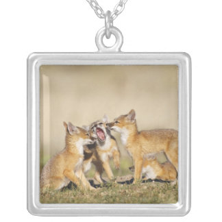 Swift Fox (Vulpes macrotis) young at den burrow, Silver Plated Necklace